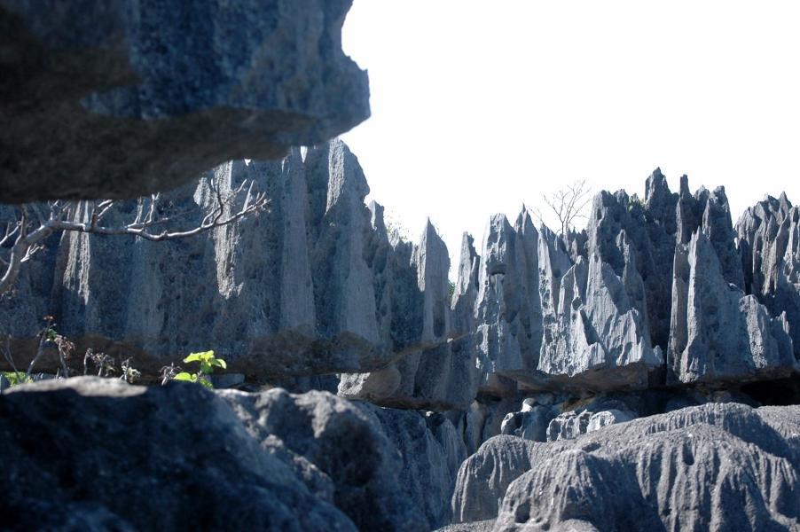 Tsingy, like the edge of a blade...